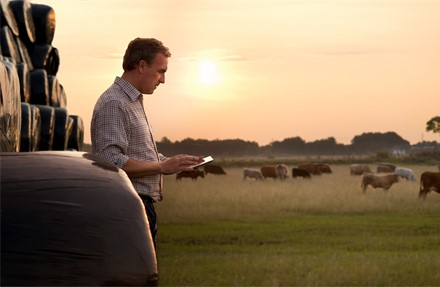 Learn how a2 Milk laps up its growth potential with Microsoft cloud