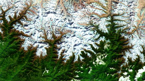 A satellite view of glaciars in the Hindu Kush Himalaya