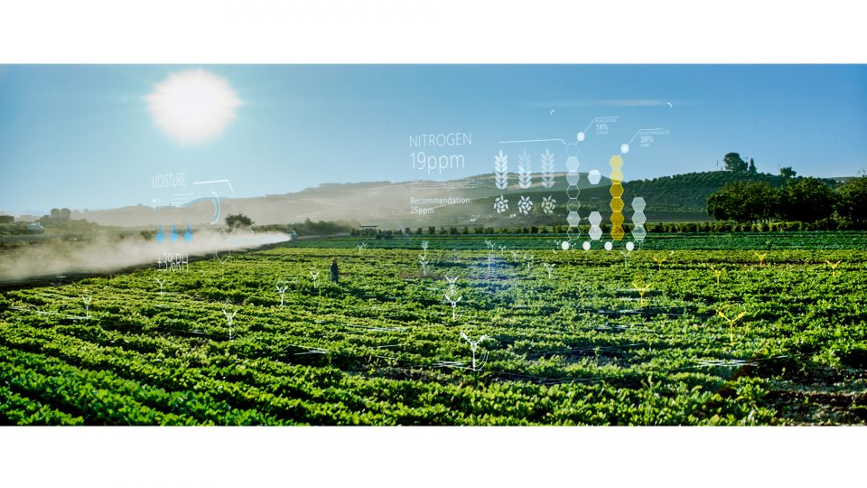 AI in Agriculture